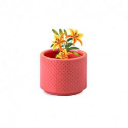 Maceta Cilindro rosa