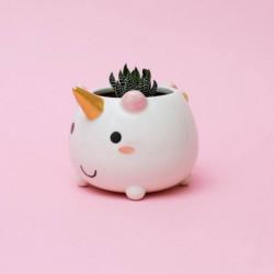 Maceta Unicornio Baby