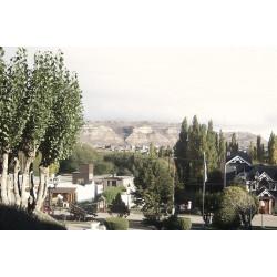 City Tour de el Calafate y Cuevas de Walicho