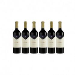 Vino Monteviejo Petite Fleur Cabernet Franc 750 ml x 6