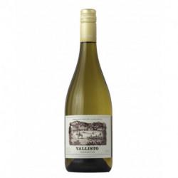 Vino Vallisto Torrontes 2020 750 ml x 6