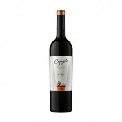 Vino Cafayate Reserve - Malbec x 6