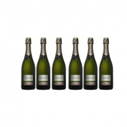 Set de 6 botellas de champagne Chandon Cuvée Réserve Blanc de Blancs 750ml (2667)