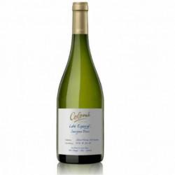 Colomé - Lote especial Sauvignon Blanc x 6